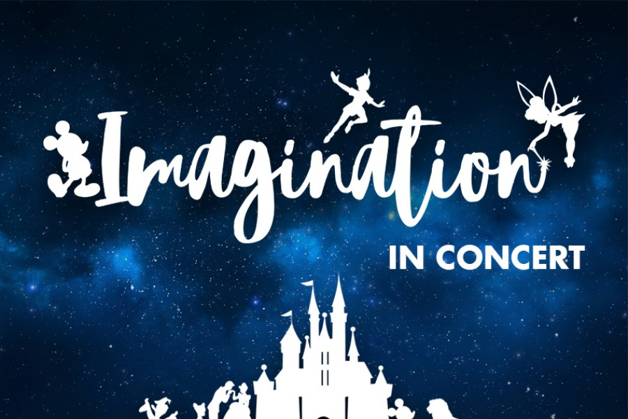 Imagination in concert